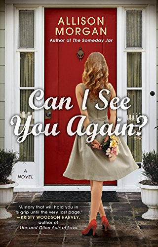 Can I See You Again by Allison Morgan